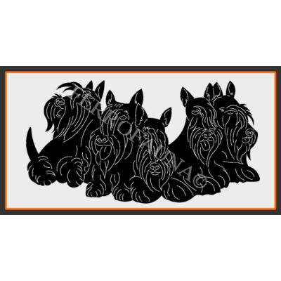 Scottish Terrier Family